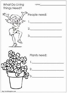 plants and animals worksheets for grade 4 13508 what do living things need sheet http worksheetplace index php function displaysheet what
