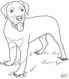 Malvorlagen Hunde Rottweiler Rottweiler Puppy Coloring Puppy Coloring Pages
