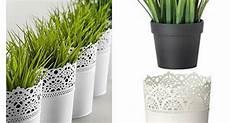 vasi per fiori ikea vasi da parete ikea as65 187 regardsdefemmes