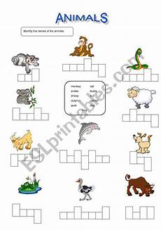 animal recognition worksheets 14025 animals identification esl worksheet by usedatwork