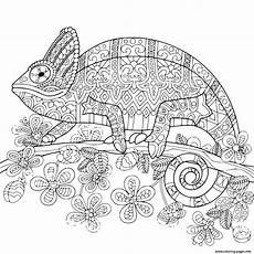 mandala coloring pages lizard 17931 chameleon mandala coloring pages printable