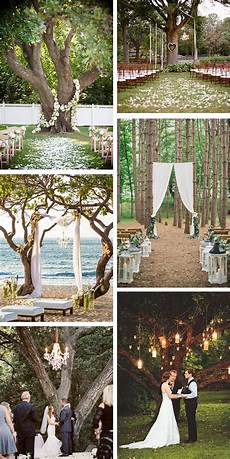 outdoor wedding ceremony a tree the destination