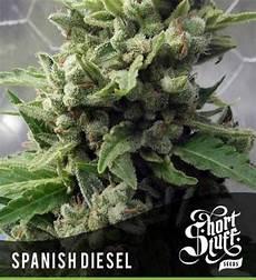 Auto Diesel Stuff 5 Seeds