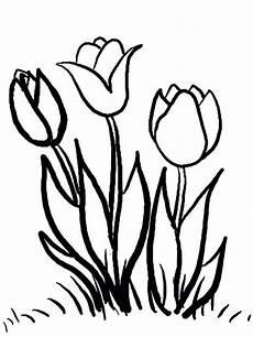 Ausmalbilder Blumen Tulpen Malvorlagen Blumen 6 Ausmalbilder