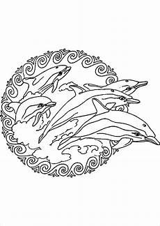 Malvorlage Meerjungfrau Delfin Malvorlagen Delfin New Ausmalbilder Meerjungfrau