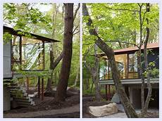 Tropical Forest Home Designs Sustainable Constructions sustainable forest house designs iroonie