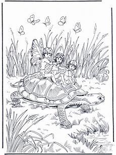 Ausmalbilder Elfen Wald Turtle And Feen Malvorlagen Ausmalbilder Und