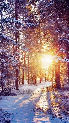 Warm Winter Iphone Wallpaper by 60 Beautiful Nature Wallpaper Free To Winter