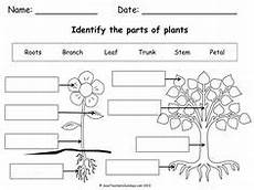 topic plants worksheets 13640 plants flowers and seeds topic eyfs ks1 teaching resources topic resources free resources