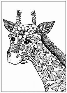 Ausmalbilder Erwachsene Giraffe Giraffe With Flowers Giraffes Coloring Pages