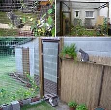 Katzen Spielplatz Garten