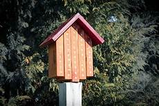 mason bee house plans ana white mason bee house diy projects