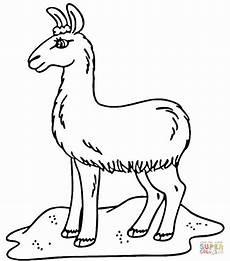 Malvorlagen Kostenlos Lama Ausmalbild Lama Auf Dem Feld Ausmalbilder Kostenlos Zum