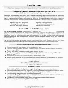 styles vp of sales and marketing resume resume sles for