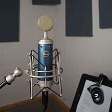 Blue Microphones Bluebird Sl Cardioid Condenser Microphone