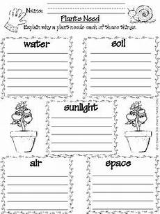 science plants ks1 worksheets 13580 1000 images about science on