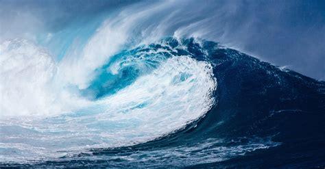 Tsunami D
