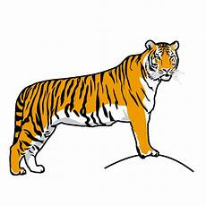 Gambar Corel Draw Tiger Clipart 29 Friendly Black White