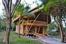 bambus garten bambus deutschland