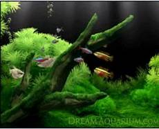 malvorlagen landschaften gratis java aquarium hintergrund aquarium hintergrundbilder hintergrund
