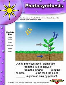 plants and photosynthesis worksheets 13616 photosynthesis worksheets for elementary classrooms photosynthesis worksheet