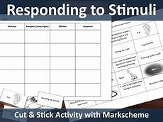 stimulus to response cut and stick activity by cadarnloz teaching resources
