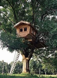 tegernsee treehouse by baumraum baumhaus selber machen