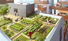 jardin potager sur terrasse potager sur le toit d un immeuble de logements 169 dino