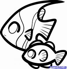 how to draw fish for step by step animals for