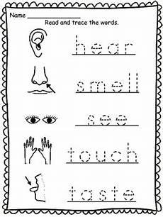 five senses worksheets esl 12645 5 senses vocabulary sheets by trisha bauer teachers pay teachers