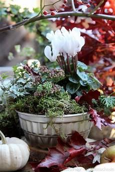 Alte Backform Bepflanzt Herbst Dekoration Herbstgarten