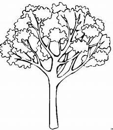Kostenlose Malvorlagen Baum Schoener Baum Ausmalbild Malvorlage Blumen