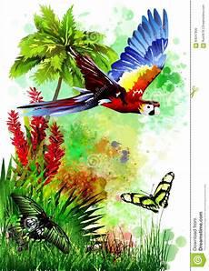 Malvorlage Vogel Mit Blume Tropischer Vogel Mit Blumen Stock Abbildung Bild 64047900