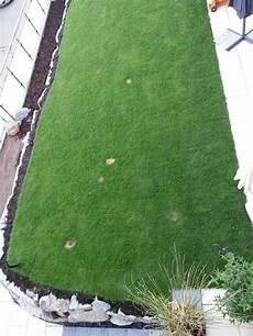 Braune Flecken In Neuem Rasen Garten
