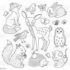 forest animals set animals outline
