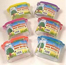 Amazon Com Set Of 6 Bug Explorer Magnifying Amazon Com Set Of 6 Bug Explorer Magnifying Bug Bucket In