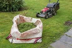 Feuchten Rasen Mähen - rasen m 228 hen oder rasen mulchen was ist besser plantura