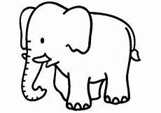 Malvorlage Kleiner Elefant Elefanten Ausmalbilder 12 Ausmalbilder