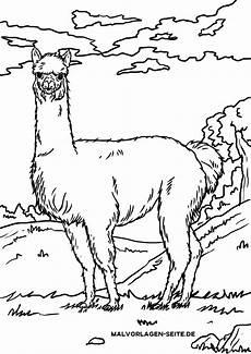 Malvorlagen Kostenlos Lama Malvorlage Alpaka Lama Tiere Ausmalbilder Kostenlos
