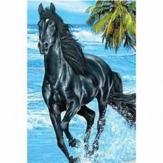 grand drap de plage 224 motif cheval noir cavacado