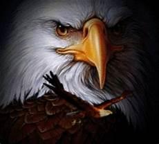 Jadilah Laksana Burung Rajawali Jp Ministry