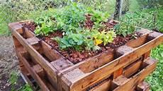 Anlegen Eines Hochbeetes - hochbeet bauen anleitung zum selber bauen plantura