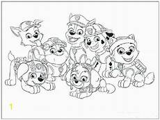 paw patrol coloring pages everest divyajanani org