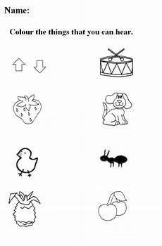 five senses worksheets for kindergarten free printable five senses worksheets presc