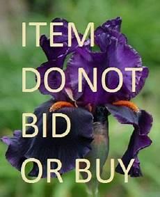 bid or buy untitled do not bid or buy greg org
