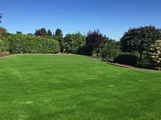 Kunstrasen Für Den Garten - kunstrasen f 252 r den garten kaufen golden green kunstrasen