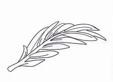 palma llanera para colorear ensinanzaere palmas y ramos