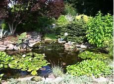 water gardening wentworth greenhouses