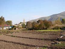 договор дарения земли сельхозназначения в крыму