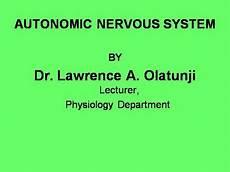 autonomic nervous system authorstream